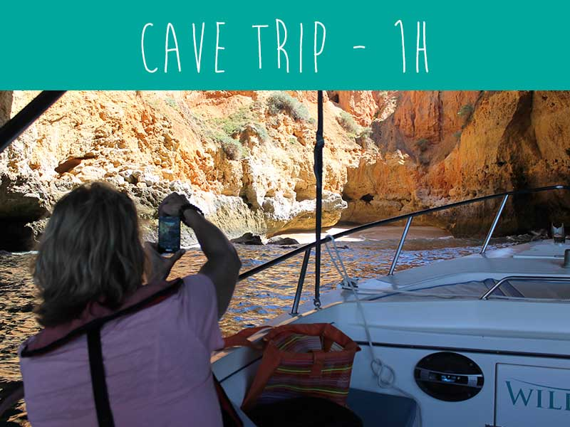 Caves trip with wildwatch Algarve boat trips