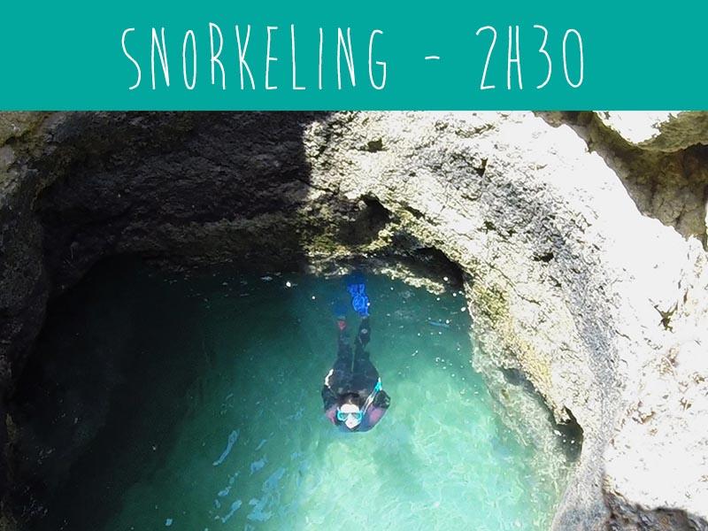 Snorkeling trip with wildwatch Algarve boat trips Ferragudo